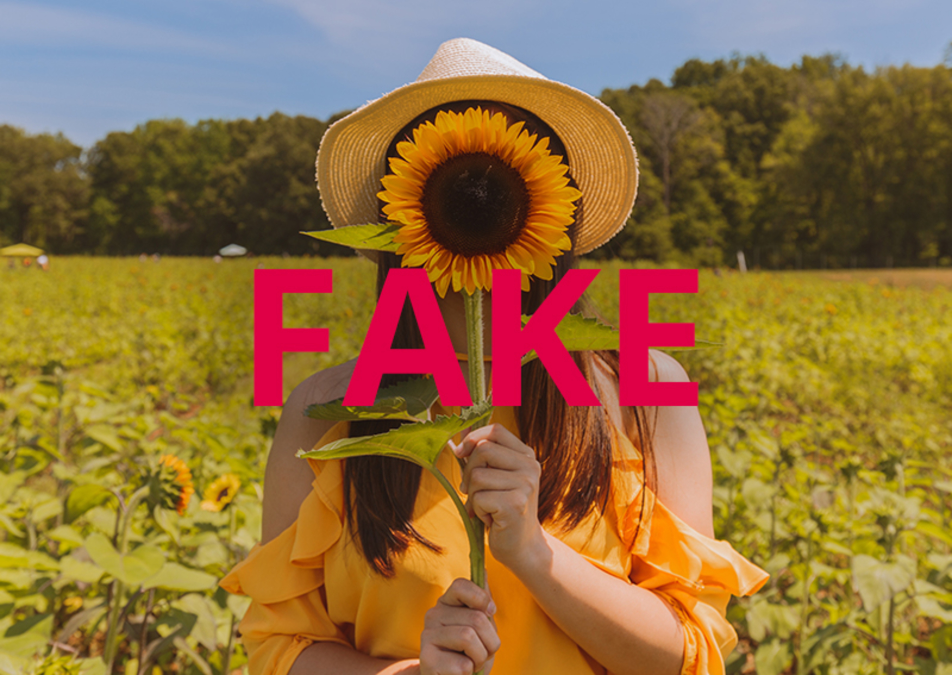4 Ways to Spot Fake Influencers in 2018 image