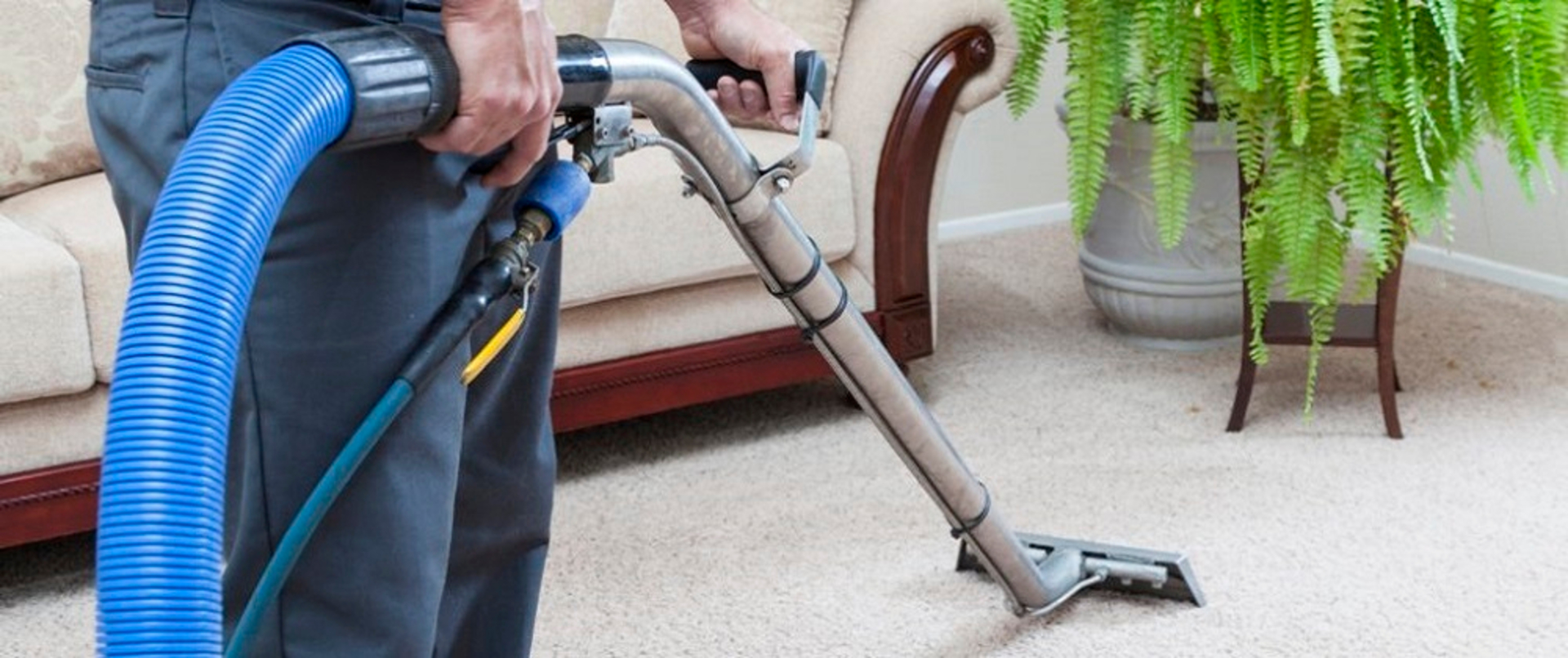 What is Lake forest carpet cleaning? – Green Carpet Cleaning image
