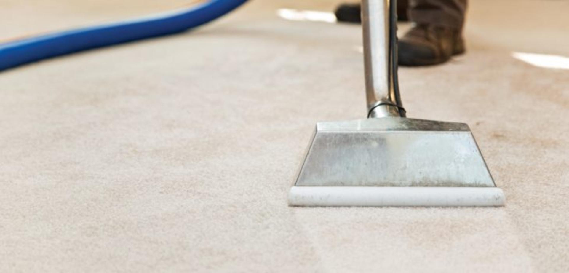 mtammy - carpet-cleaner-huntington-beach-730x350