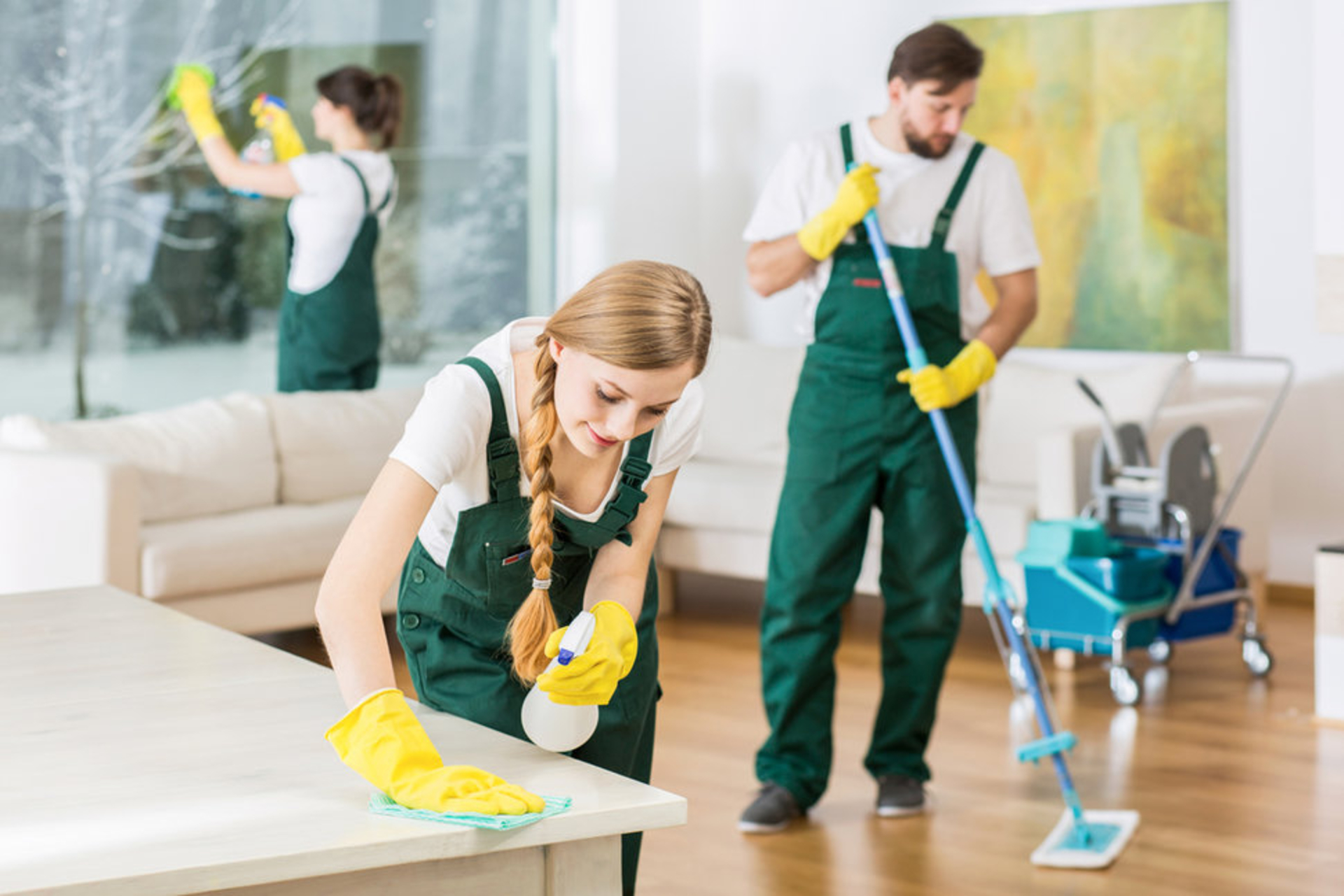 5 Useful Aspects of Professional Cleaning Services image