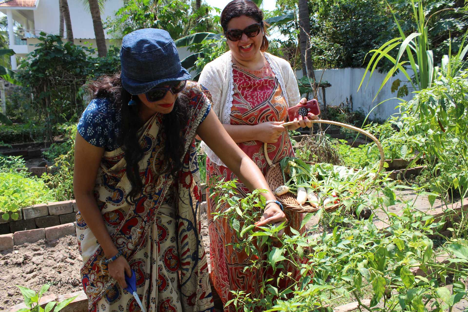 IshtyleAwhile - A Chennai based Indian Fashion Blog - organic farming in chennai