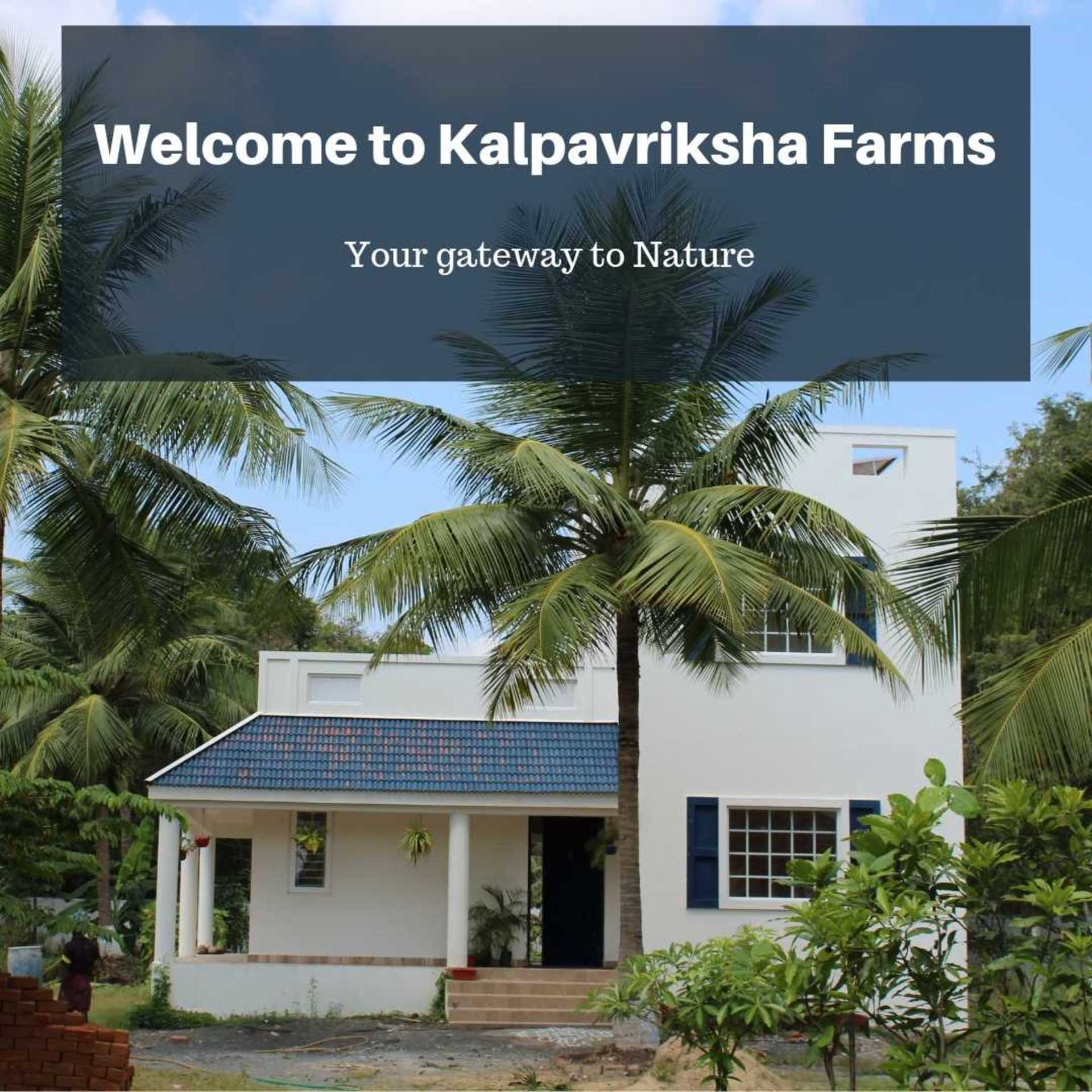 IshtyleAwhile - A Chennai based Indian Fashion Blog - Welcome to Kalpavriksha Farms