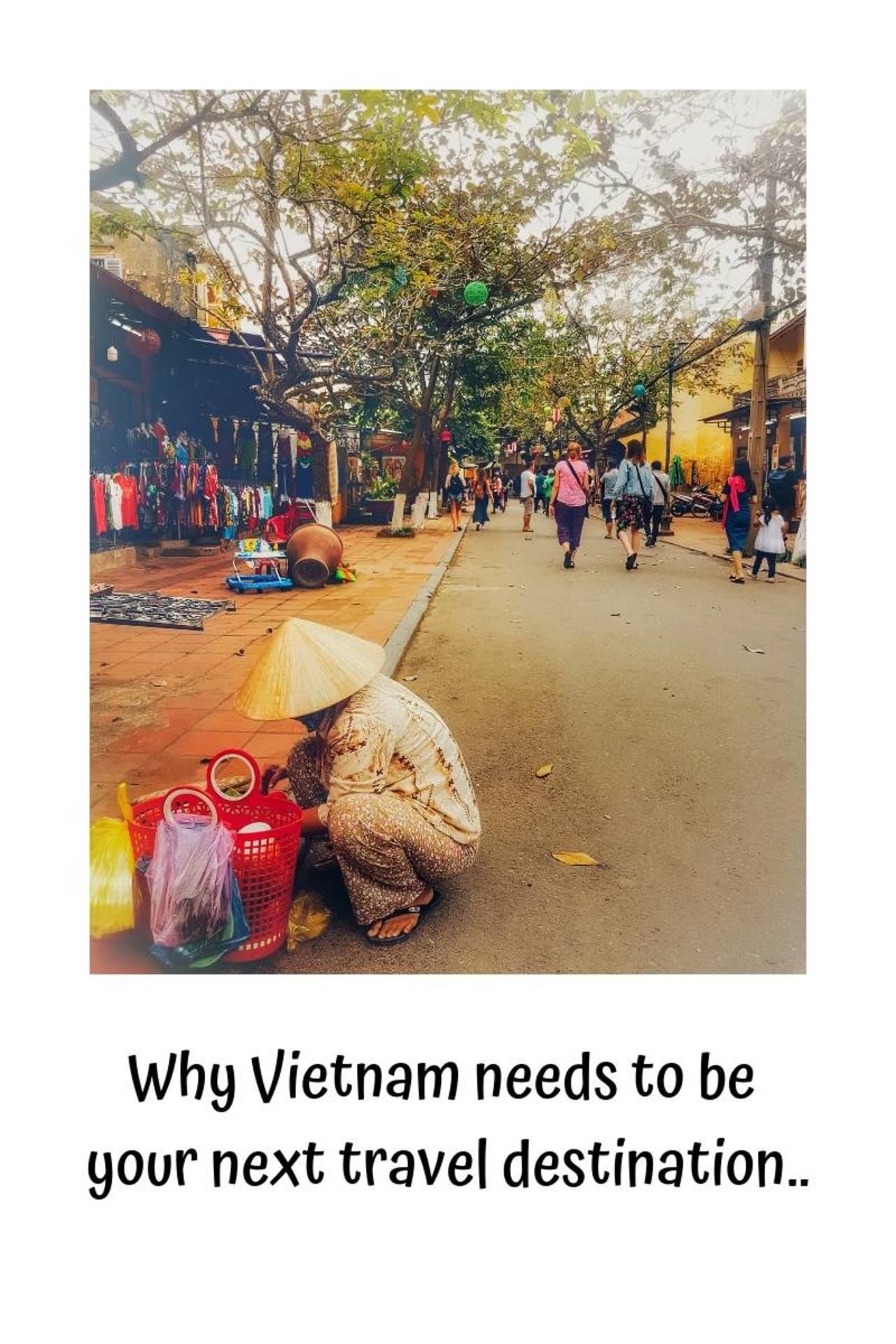Why Vietnam needs to be your next travel destination. image
