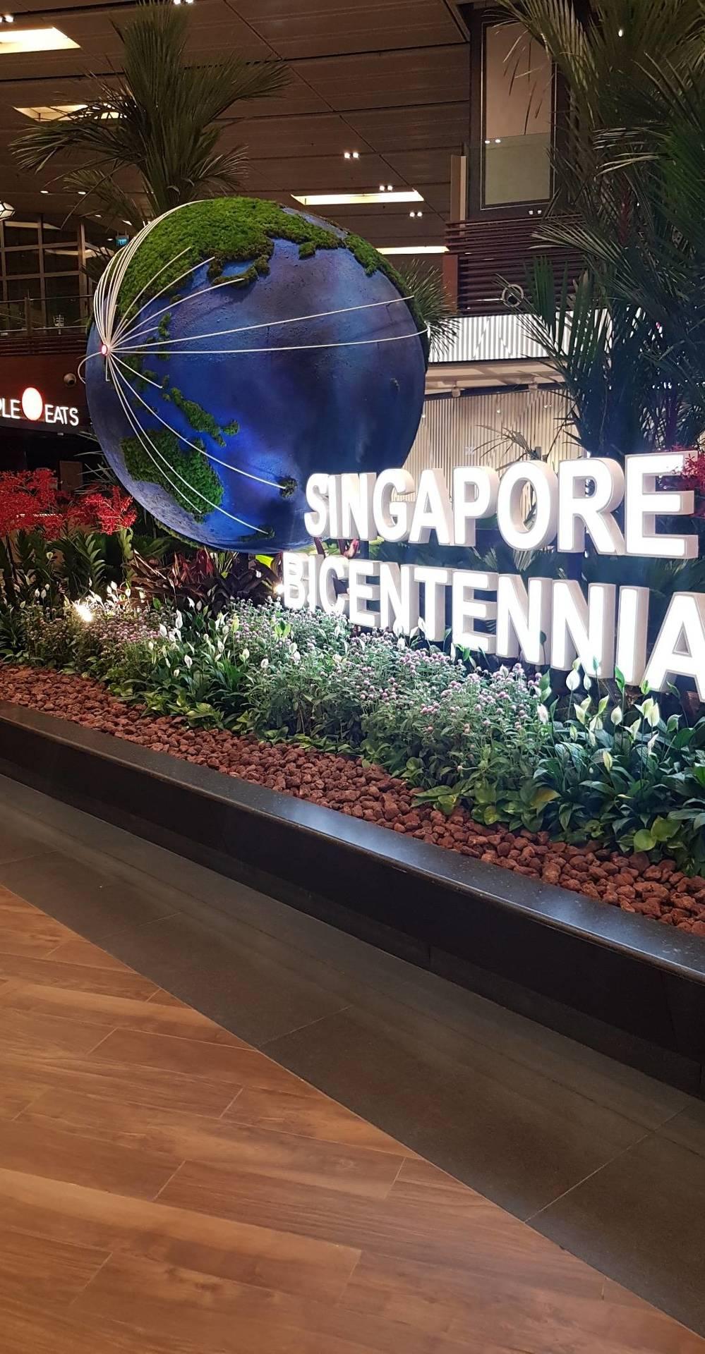 SINGAPORE DIARIES image